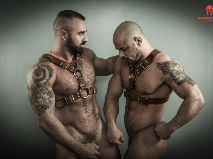 Sparta's Harness